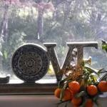 This window is in our kitchen, overlooking the driveway, and an assurance that all food in our home is prepared with love.
