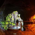 Volcanos National Park - Lava Tube