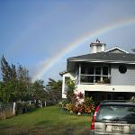 Rainbows and sunshine are common occurrences at our lovely mountain home.  Snuggled into the Kohala Hills, overlooking rolling hills to the ocean, our home is a dream come true.